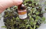Подкормка помидоров йодом в теплице и открытом грунте, рецепты