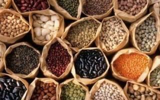 Виды овощей и методы их посадки, выращивания, хранения