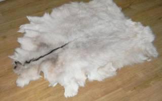 Забой, разделка, выделка шкур козы в домашних условиях