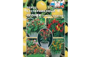 Перец Огонёк: описание и характеристики, посадка и выращивание, отзывы, фото